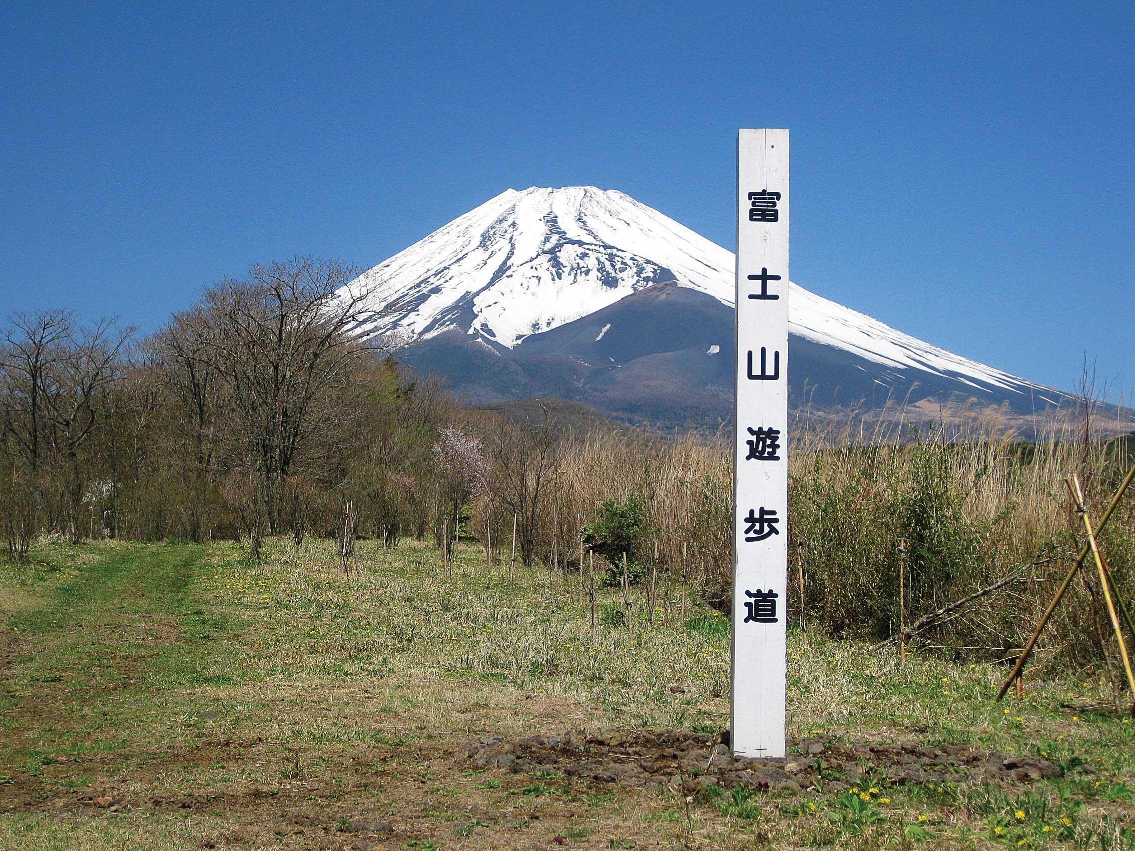 富士山遊歩道