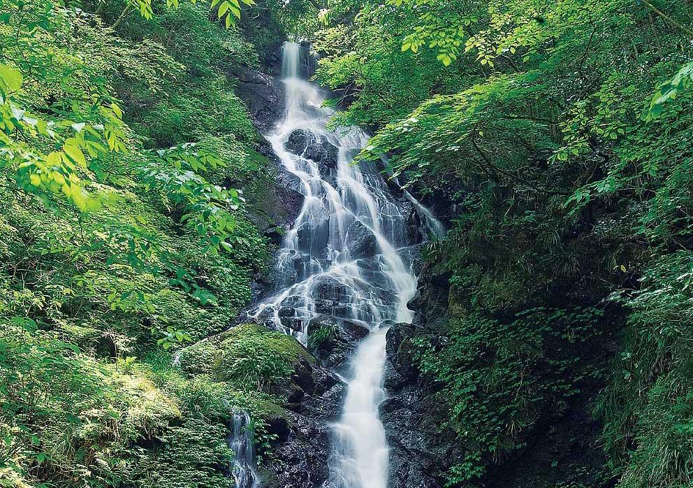 天子の七滝